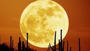 Biggest Full Moon of 2012 Occurs This Week