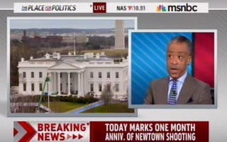Al Sharpton 'We Can't Preach American Exceptionalism' Unless We Treat Newtown Shooting Like 911