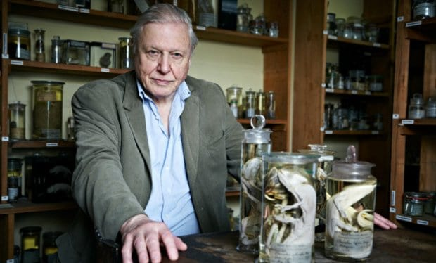 David Attenborough 'Humans Are A Plague On The Earth'