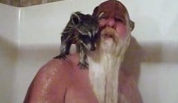 Mark Coonrippy Brown Runs For Governor To Get His Seized Raccoon Rebekah Back