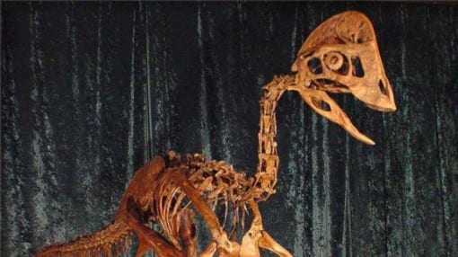 Scientists unveil dinosaur dubbed the chicken from hell