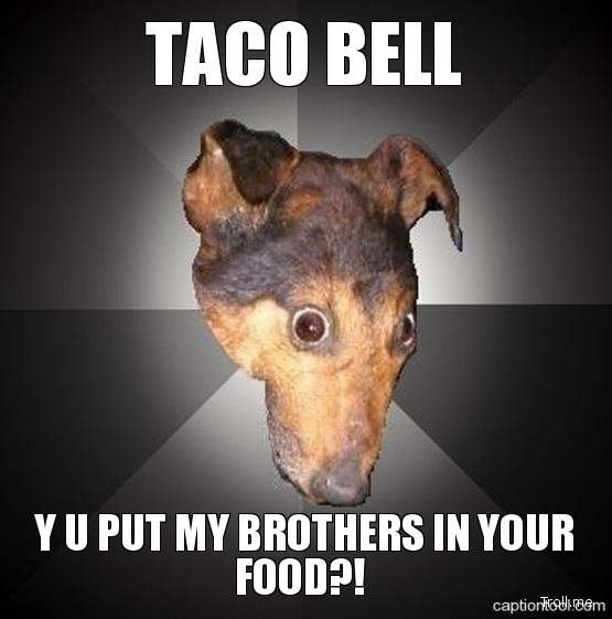 taco bell y u put my brothers in your food