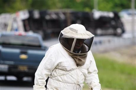 Bees swarming Delaware accident close highway ramp