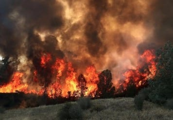 3 Firefighters Killed in WA Wildfire