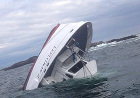 5 Brits Dead in Whale Watching Accident VIDEO