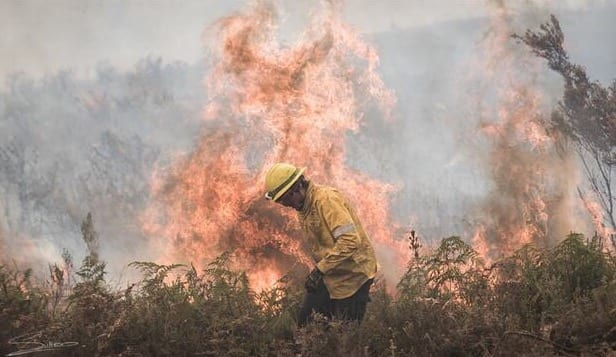 Death Toll Rises To 7 In Eastern Tennessee Wildfires
